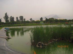Parque Sinchi Roca